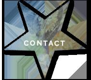 Contact met Sterker Inzicht